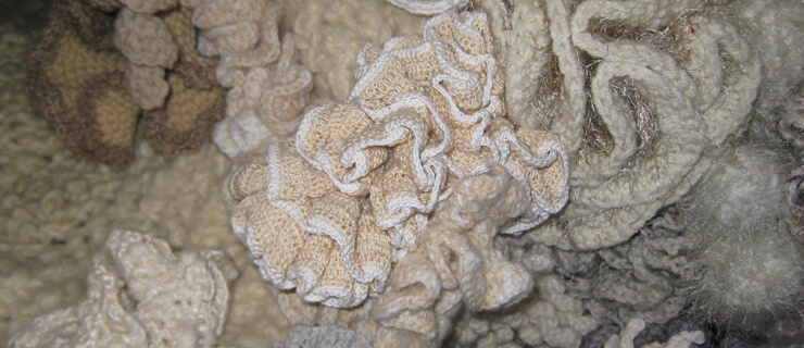 morte-dos-recifes-de-coral-mundo-de-viagens