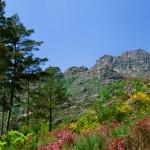 Serra do Gerês é considerada uma das mais encantadoras regiões de Portugal