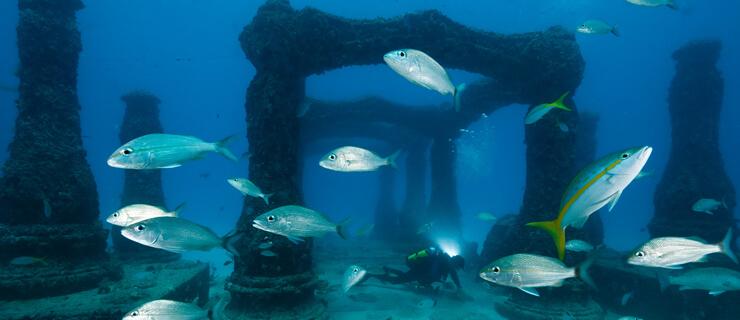 maravilhas submersas