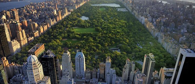 newyork-dois
