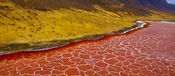 lake-natron